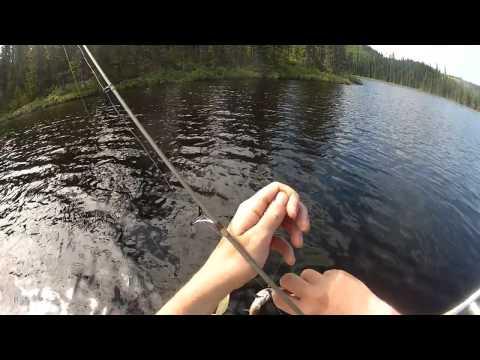 Pêche à la truite mouchetée aux Monts-Valin
