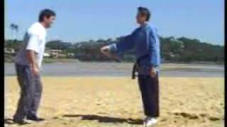 John Gill - Hapkido - Self Defence Techniques - Martial Arts TV