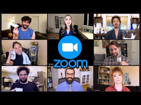 The Zoom Song - Brady Bunch Parody