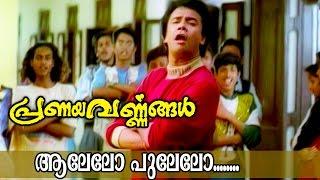 Video Aalelo Pulelo... | Superhit Malayalam Movie Song | Pranayavarnangal MP3, 3GP, MP4, WEBM, AVI, FLV November 2018