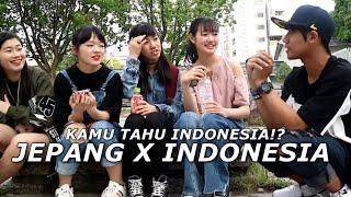 Video Cewe jepang tau indonesia? MP3, 3GP, MP4, WEBM, AVI, FLV Agustus 2018