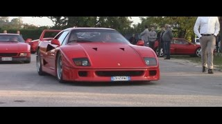 I've spotted this awesome Ferrari F40.Enjoy the Video and Subscribe in my Youtube Channel for more.Follow me on: Instagram: https://www.instagram.com/bestcarsnation/Facebook: https://www.facebook.com/bestcarsnation/Twitter: https://twitter.com/bestcarsnation