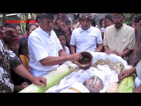 Video Upacara Ngaben Masyarakat Bali (Balinese Ngaben Ceremony) download in MP3, 3GP, MP4, WEBM, AVI, FLV January 2017
