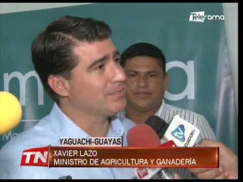 EE.UU. invertirá $ 1,2 millones en el sector cacaotero ecuatoriano