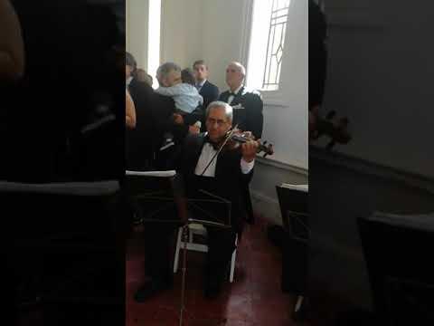 Cuarteto de cuerdas para ceremonias