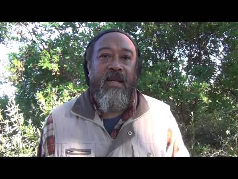 Mooji Video: Beware of False Awakenings