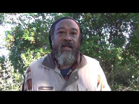 Mooji Video: Beware of False Awakenings