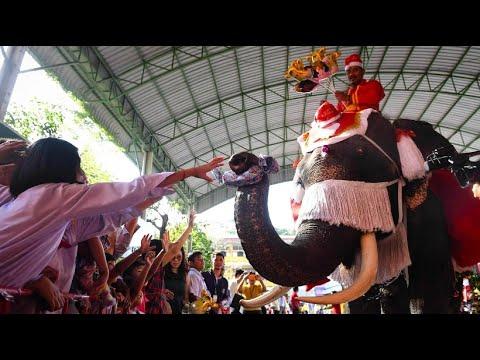 Thailand: Weihnachten mit Elefant statt Rentier - Luftballons, Süßigkeiten und Stofftiere für die Kinder