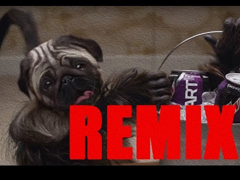 Puppy Monkey Baby THE REMIX