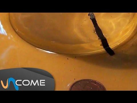 come prendere una moneta in acqua senza bagnarsi le dita della mano