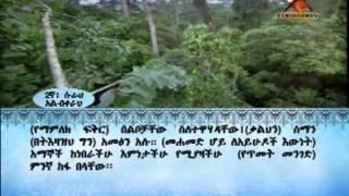 ETHIODURUS  Quran Amharic Trans. 2 Al Baqarah 1 - 157.