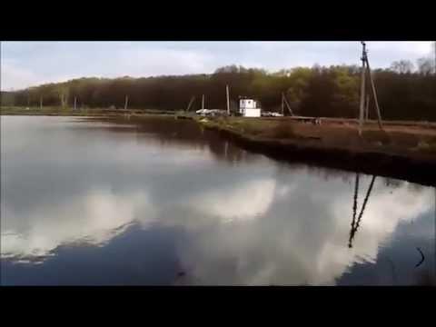 рыбхоз осенка платная рыбалка