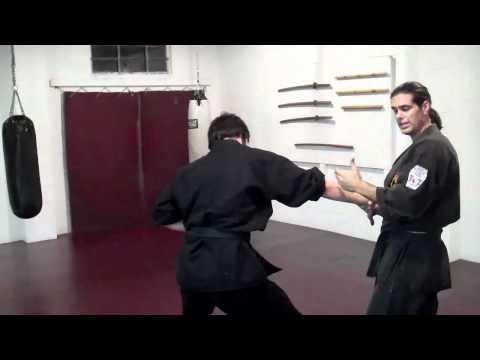 Combat Jujutsu ONE