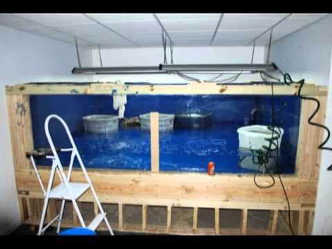 1500 Gallon aquarium/fish tank build. 8 weeks in under 3 mins. NEW VERSION