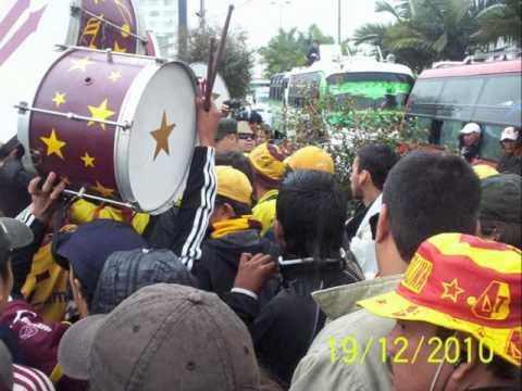 revolución vinotinto sur - visitante carnaval toda la vida - Revolución Vinotinto Sur - Tolima