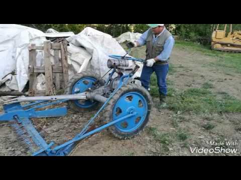 Az. Agr. Falciatura dell'erba con moto falciatrice B C S (1950)