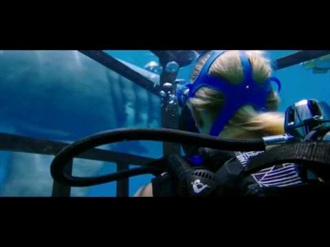 47 Meters Down - In the Deep - trailer