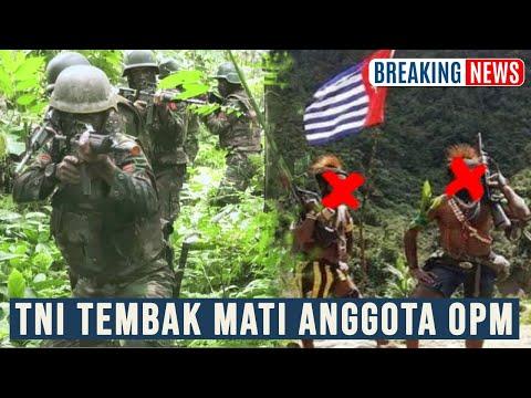 BERITA TERBARU 0PM P4PUA KALANGKABUT DIGEMPURR TNI POLRI ‼️ BERITA VIRAL