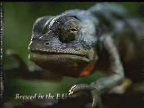 You Are One Sick Lizard Banned Commercial