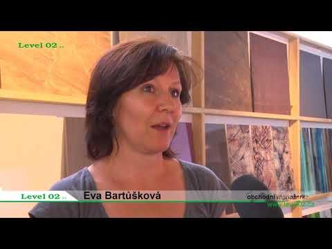 Podnikatelský express: Level02