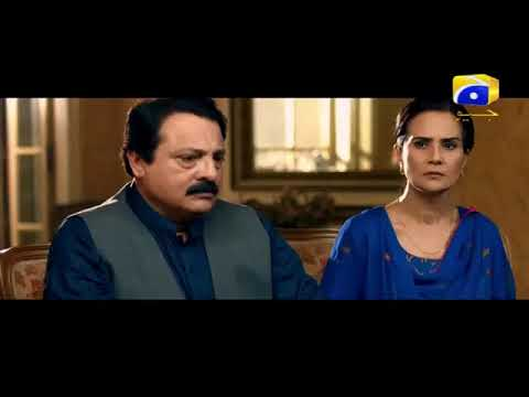 Shayad Episode 19 in HD | Pakistani Dramas Online in HD