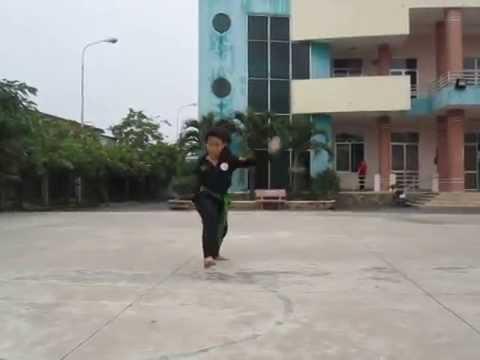Bạch Hạc Sơn Quyền - Nguyễn Đình Tú - Võ Đường Phi Lâm