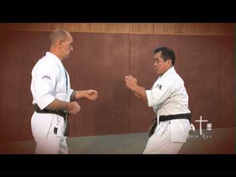 Okinawa Karate Goju Ryu