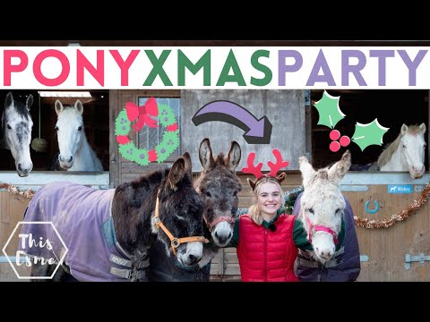 Pony Christmas Party with the Donkeys! AD | This Esme