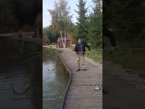Видеоотчет о рыбалке за 29 августа 2021 г.