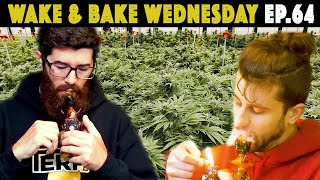 Lemon Peel Dry Sift | WAKE N BAKE WEDNESDAY #64 by The Cannabis Connoisseur Connection 420