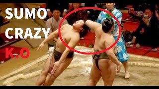 Video Sumo Wrestling Brutal And Best Knockouts Compilation MP3, 3GP, MP4, WEBM, AVI, FLV Oktober 2018