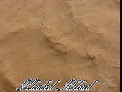 شعيب وادي الرمة في عنيزة وقت الضباب
