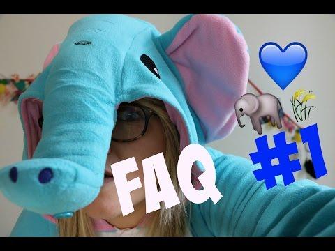 FAQ #1| JE SUIS UN ELEPHANT ♡