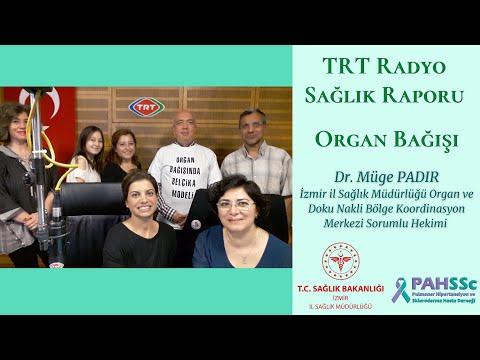 TRT Radyo - Sağlık Raporu - Organ Bağışı - 2018.11.07