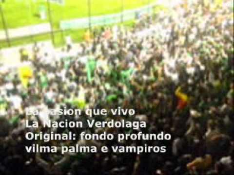 la nacion verdolaga la pasion que vivo - Nación Verdolaga - Atlético Nacional