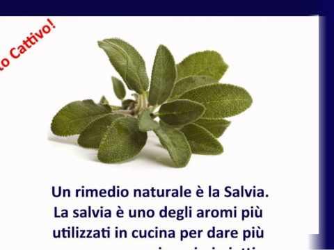 salvia: rimedio naturale per alito cattivo.