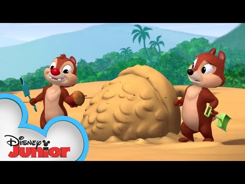 Sand Castle Hassle | Chip 'N Dale's Nutty Tales | Disney Junior