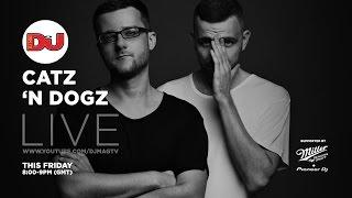 Catz 'N Dogz - Live @ DJ Mag HQ 2016