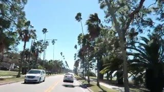 Dunedin (FL) United States  city photos : Dunedin Florida Farmers Market/Lunch Beef O Brady's/USA Vlog