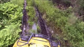 8. Suzuki Vinson 500 swamp riding - Gopro 3 white
