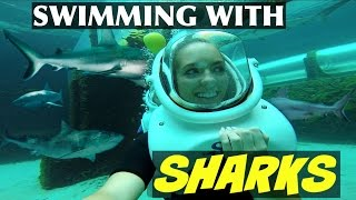 Video SWIMMING WITH SHARKS IN THE BAHAMAS!! MP3, 3GP, MP4, WEBM, AVI, FLV Juni 2018