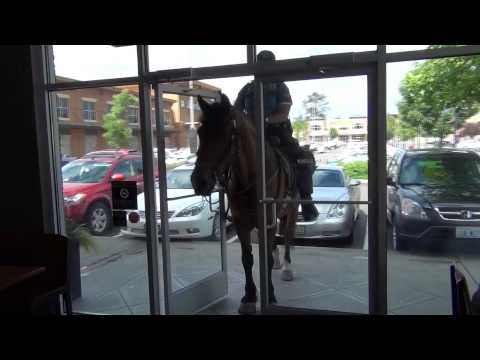 Seattle Mounted Patrol (видео)
