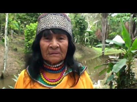 العرب اليوم - شاهد: إزهاق روح كندي اتّهم بقتل معالجة روحانية في غابات الأمازون