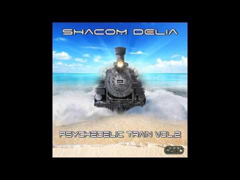 Shacom Delia - Superheater