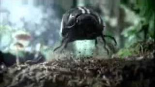 Quang cao - Super Bowl 2011 Commercial - Volkswagen Black Beetle