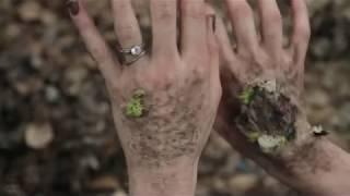 Nonton Arbor Demon Trailer 2017 Hd Horror Film Subtitle Indonesia Streaming Movie Download