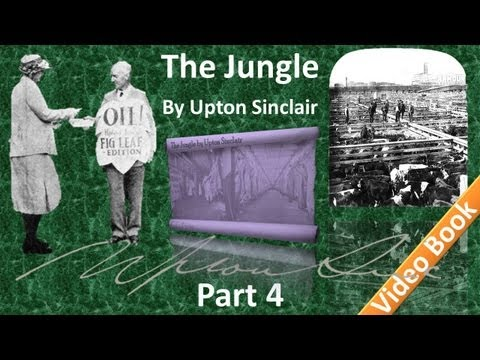 Part 4 - The Jungle Audiobook by Upton Sinclair (Chs 13-17)