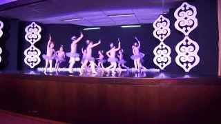 Minha linda Maria Na apresentação de balé!!! coisa mais linda da Mãe... JArdim2