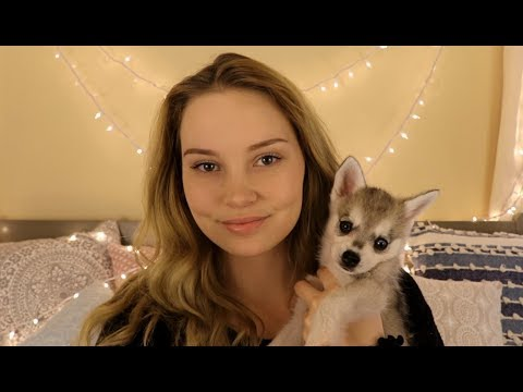 ASMR Arya  Puppy Love and Petting