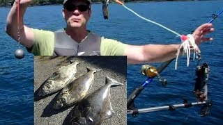 How to fish for halibut in the Strait of Juan de Fuca in Canadian waters or Washington Waters. John Beath uses Brite Bite Octo Squid Leaders from www.squidlures.com to catch three 50 pound halibut. Beath shares his secrets of attracting halibut to his hook in this video.
